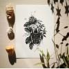 Collection Entomologique - Chap. 1